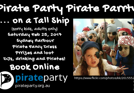 PirateParrtyonaTallShip01 kids